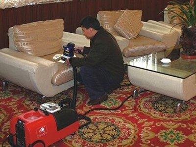 地毯沙发山猫直播下载 (6)